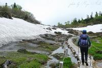 湿原を歩く - Ryu Aida's Photo