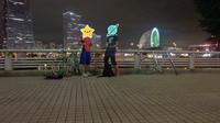 2013年9月1日旅の終焉鎌倉からの帰還 - さとられず