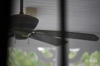 シーリング・ファン / ceiling fan - Seeking Light - 光を探して。。。
