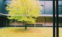 伊丹十三記念館を訪れて-愛媛県- - 建築つづり