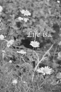 夢は離れ野を駆けめぐる - Life is…
