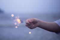 一瞬の花火にも似て - 相模原・町田エリアの写真サークル「なちゅフォト」ブログ!