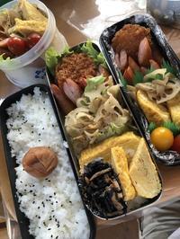 7月31日(水 -  高校男子…じゃなくて予備校男子弁当  ときどき趣味&動物
