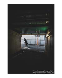 右か左か - ♉ mototaurus photography