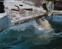 2019年7月天王寺動物園その2 - ハープの徒然草