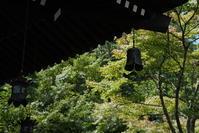 7.28 長谷寺 - 週末はソニーα6500でぶらり鎌倉・湘南散歩!
