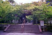 京都 永観堂 - mglss studio photography blog