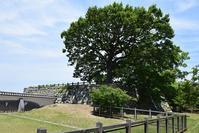 築城400周年の明石城を歩く。その6<本丸~天守台・人丸塚~> - 坂の上のサインボード
