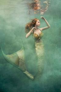 写真:Cheryl Walshの人魚 - Books
