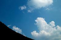 サル対策の電柵・・・オクヤマガーデンのオニユリ - 朽木小川より 「itiのデジカメ日記」 高島市の奥山・針畑からフォトエッセイ