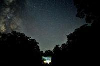 ファガスの森-星の軌跡- - ブナの写真日記