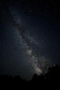 2019天の川-ファガスの森- - ブナの写真日記