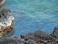 同じ場所に - 三宅島風景