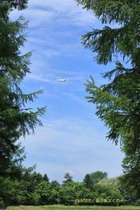 毎日更新の弊害~旭川空港~ - 自由な空と雲と気まぐれと ~from 旭川空港~