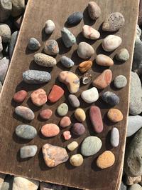 【海で拾った石】真夏の石拾い - azukki的.