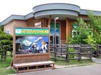 北の大地の水族館と千歳水族館。 - 季節の野鳥~Wildbirds archives