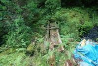 リベンジ白倉又谷8月1日 - ratoの山歩き