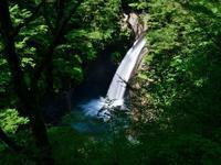 夏の「大釜の滝」 - ブナの写真日記