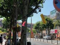 盛岡はさんさ祭り真っ最中 - 千葉の香りの教室&香りの図書室 マロウズハウス