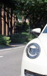 Beetle - 心のカメラ   more tomorrow than today ...