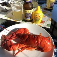 Lobster Night (ロブスター・ナイト) - ファルマウスミー