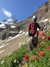 世界の名峰、Mtアシニボイン(3618 m)登頂 - ヤムナスカ Blog