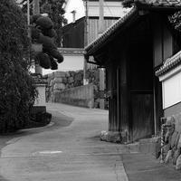 散歩写真夏1 - Photo Break