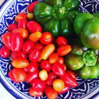 我が家の菜園日記 n.30  甘い甘いぺったんこピーマン - 幸せなシチリアの食卓、時々旅