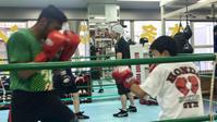ジュニアボクシングを楽しんで - 本多ボクシングジムのSEXYジャーマネ日記