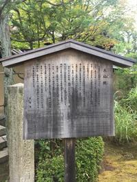 禅寺体験へ①(大杉) - 柚の森の仲間たち