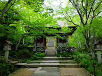 常寂光寺 - 花と風景 Photo blog