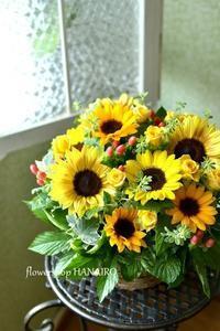 夏はやっぱり、ひまわり!! - 花色~あなたの好きなお花屋さんになりたい~