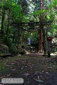 滝の見える神社 - Mark.M.Watanabeの熊本撮影紀行
