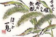 狭い庭でも、草ひきは大へん。 - 気まぐれ絵手紙