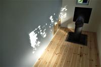 無垢フローリングパインと杉 - SOLiD「無垢材セレクトカタログ」/ 材木店・製材所 新発田屋(シバタヤ)