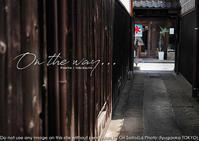 心はいつも旅してる、倉敷。sony α7RIII + SEL55F18Z 一本勝負作例。 - 東京女子フォトレッスンサロン『ラ・フォト自由が丘』〜恋フォトからはじめるさいとうおりのテーブルフォトレッスン〜