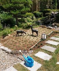 新しいジョウロを買ってきてほしいです - 金沢犀川温泉 川端の湯宿「滝亭」BLOG