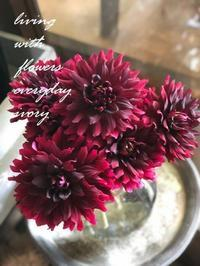 【〜お盆中の予定です〜♬】 -  Flower and cafe 花空間 ivory (アイボリー)