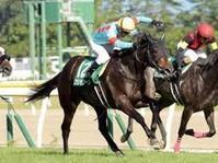 関屋記念2019予想 - 競馬好きサラリーマンの週末まで待てない!