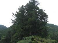 Hesonoo - Takamagahara, Nara - Hommage an die japanische Ästhetik im Alltag und einfach umsonst...