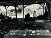 旧芝離宮恩賜公園に来ています。蝉の合宿、水面を渡る風が心地よい。 - 設計事務所 arkilab