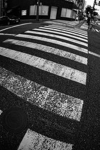 ご近所Snap #02 - noBBy's *PhotoLabo*