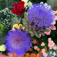 お盆のお花、ご予約承り中です♪♪ - ブレスガーデン Breath Garden 大阪・泉南のお花屋さんです。バルーンもはじめました。