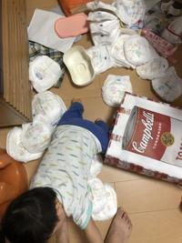 新米母ちゃんホンダです。 - ファンハウスアンドデザイン │ 高知県のオーダーメードの新築・リフォーム