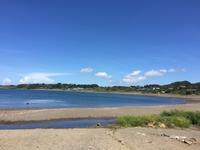 今週もエビカ浜へ♪ - 自然と遊楽