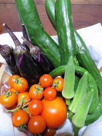 市民農園の収穫で野菜を活けてみよう - 活花生活(2)