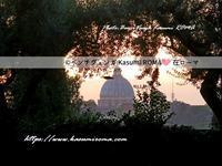 """""""ただいま~、ローマに戻ってきました♪^0^"""" - 『ROMA』ローマ在住 ベンチヴェンガKasumiROMAの「ふぉとぶろぐ♪ 」"""