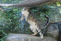 ミミちゃんは活動的 - 動物園に嵌り中2