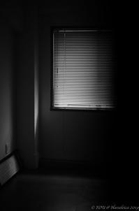 gentle light through the blinds ... - 心のカメラ   more tomorrow than today ...