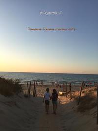 暑い1日の終わりを告げる素晴らしい夕日 - ボローニャとシチリアのあいだで2